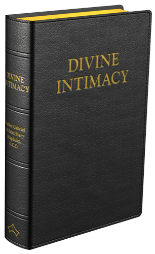 DivineIntimacy2